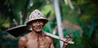 https://pixabay.com/photos/person-old-man-worker-hat-asian-768582/